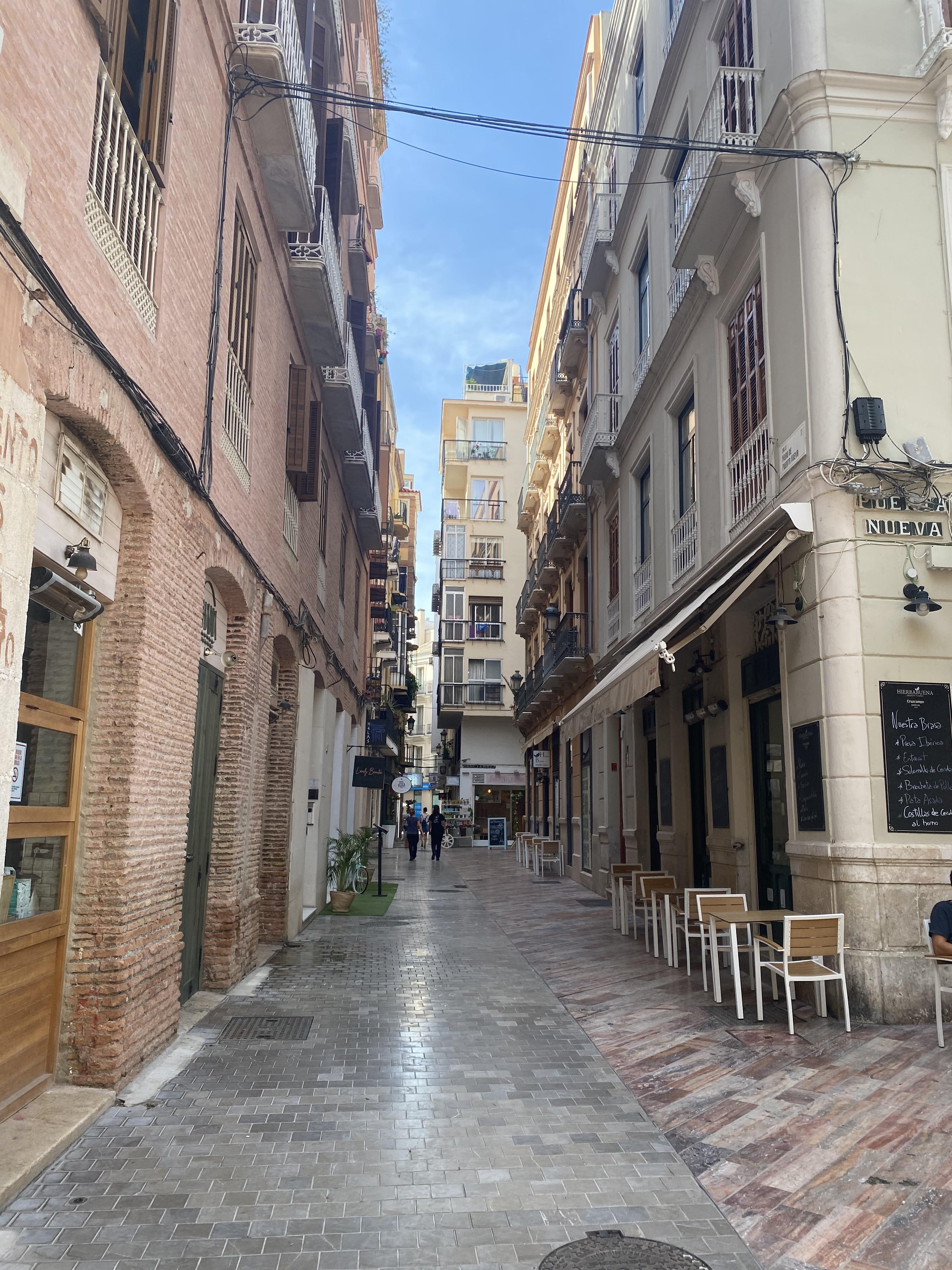 malaga_streets_grapevine_properties