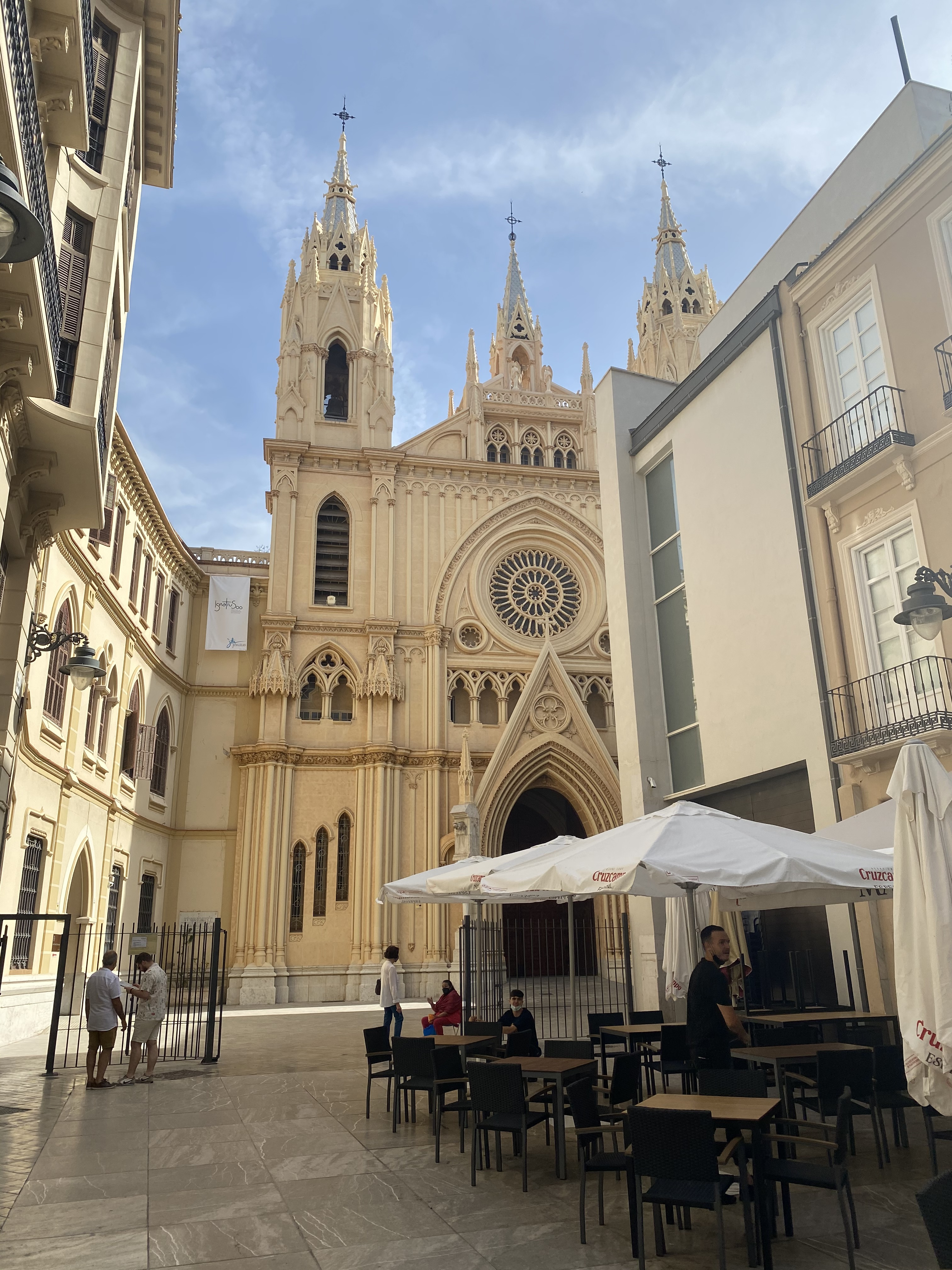 malaga_cathedral_grapevine_properties